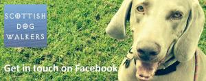 scottishdogfacebook